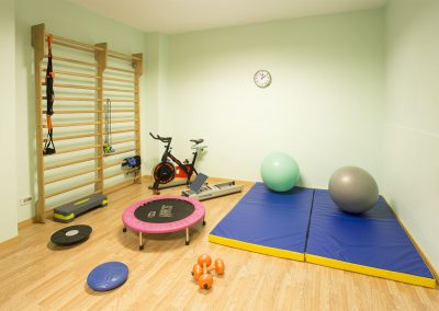 Palestra Clever Rehabilitation